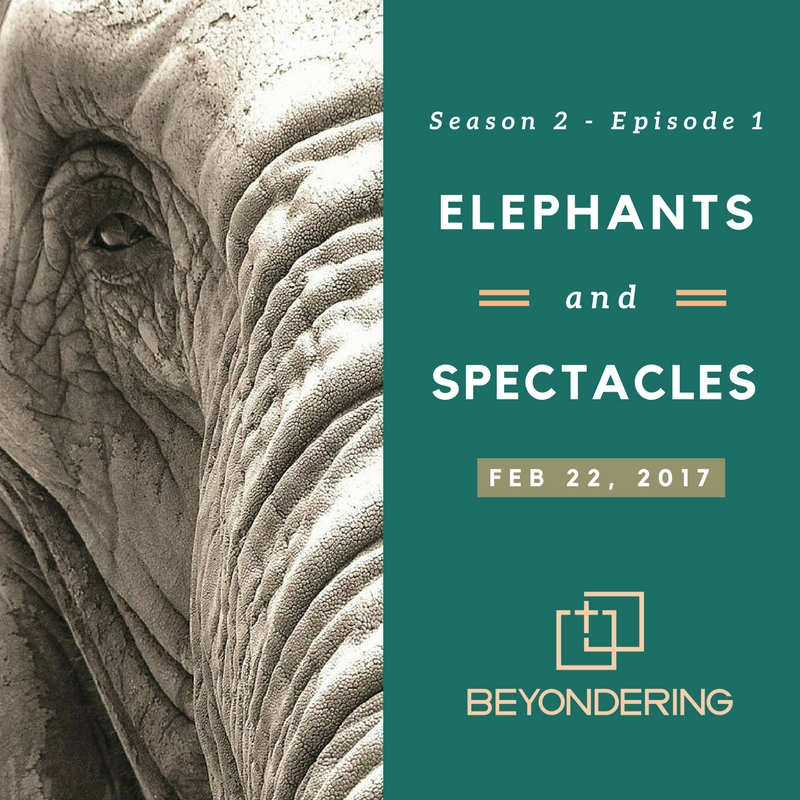 Episode 2.1 – Elephants and Spectacles